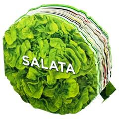 pratik-salata-tarifleri